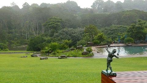 Pool and garden at Makaranga Luxury Garden Manor.