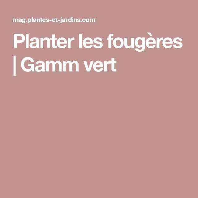 Planter les fougères   Gamm vert