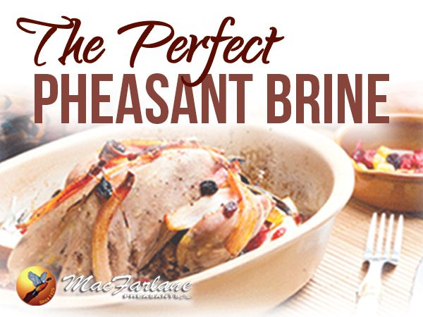 Fried pheasant recipes easy