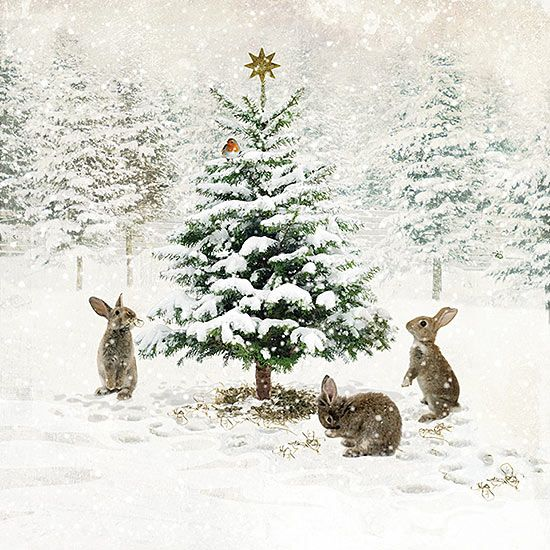 ✻BugArt Christmas Landscapes ~ Three Bunnies. CHRISTMAS LANDSCAPES Designed by Jane Crowther. Original Art Photography by Lynnette Henderson.