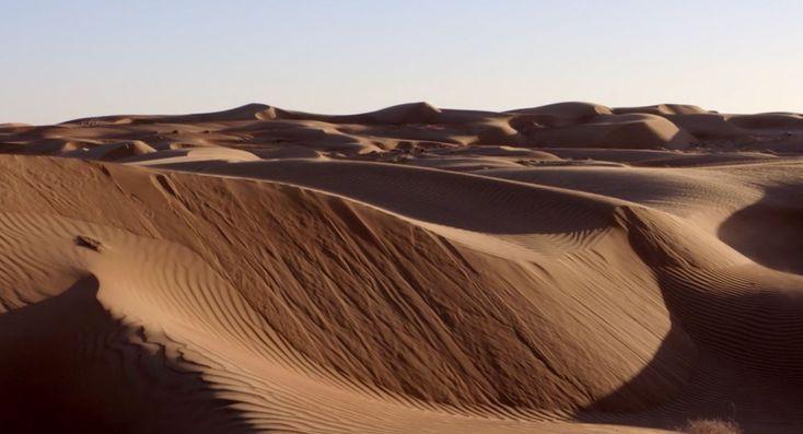 Cómo y cuáles son los mayores desiertos del mundo. Ejemplos, qué tipos de desiertos hay y cómo funcionan los ecosistemas desérticos en la Tierra.  #desiertos #ecosistemas #tierra