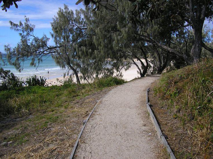 The track from the Stradbroke Island Beach Hotel to Cylinder Beach.