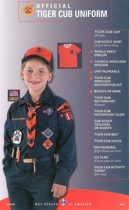 cub scout uniform patch placement | Webelos Scouts