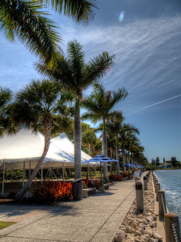 The mansion of John Ringling at theRingling Circus Museum, sits directly on Sarasota Bay. The view is spectacular and this is looking back at the shoreline of the grounds from the expansive zig-zag marbled deck. There are rows of lovely Royal Palm Trees and a grand walkway. To the left is a large tent set up for a wedding or other large function.