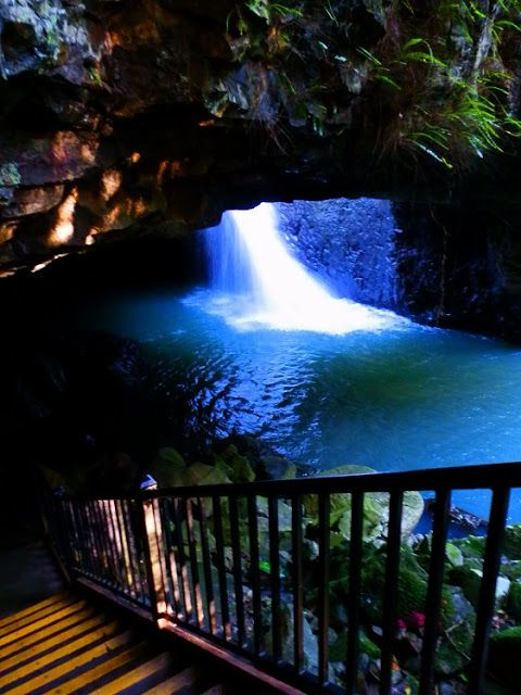 Beauty and the Bridge, Springbrook National Park, #Queensland! More HERE: http://rednomadoz.blogspot.com/2013/07/beauty-and-bridge.html