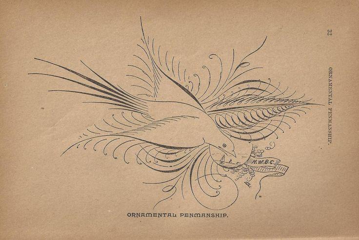 176 Best Calligraphy Art Images On Pinterest Penmanship
