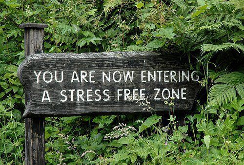 Thinking I need this sign in my garden: Doors, Stress Free, Quotes, Gardens Signs, Street Signs, Places, House, Free Zone, Zen Gardens