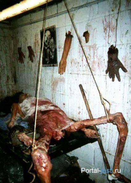 Wayne David Parker : Warning graphic victim of serial killer tayde pinterest
