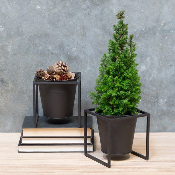 Flowerpot with stand to display your favourite house plants in your home. Price DKK 39,80 / SEK 55,80 / NOK 57,70 / EUR 5,59 / ISK 1088 / GBP 5.18