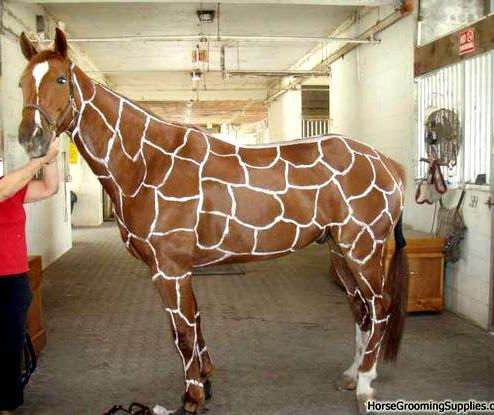 I'm definitely gunna do this to my horse now! And I can paint black on my white horse to look like a zebra :)