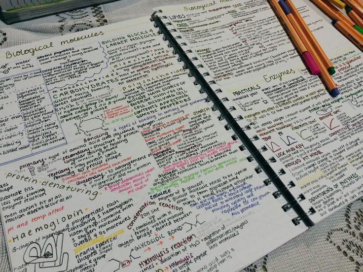 healthspiringblog: Biology notes  - The Organised Student