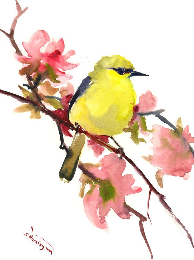Blue Winged Warbler Bird And Spring Blossom Original Watercolor