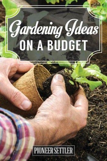 Gardening Ideas On a Budget
