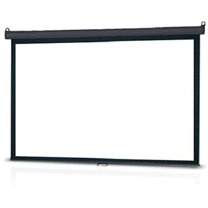 """InFocus 120"""" Manual Pull Down Projector Screen - For the Tiny House Dwelling Movie Nut...    -  To connect with us, and our community of people from Australia and around the world, learning how to live large in small places, visit us at www.Facebook.com/TinyHousesAustralia"""