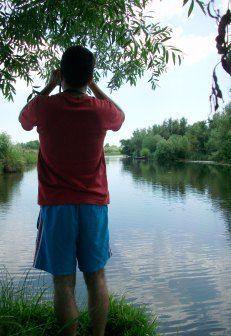 Bird Watching in the Danube Delta, Romania at romanianexperience.wordpress.com