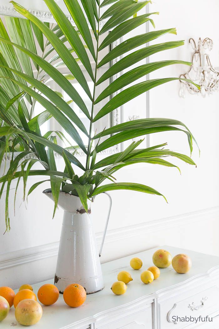 Palm Tree Home Decor Trends Leaves Pinterest And