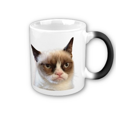ohhh grumy cat how cute!!  Original Grumpy Cat Mug