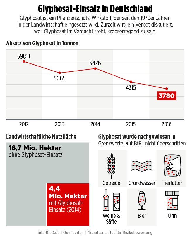 Heftiger GroKo-Zoff um Glyphosat-Entscheidung - Seehofer soll von Alleingang gewusst haben - Politik Inland - Bild.de