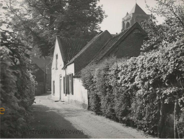 Algemeen overzicht van de Noyenstraat, richting Kerkstraat. De beukenheg rechts grenst aan de tuin van de rk pastorie. Op de achtergrond de provisorisch herbouwde toren van de St.Petruskerk - 1955
