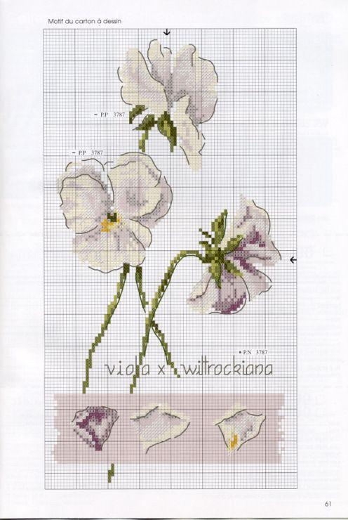 (2) Gallery.ru / FA 062s Nisan-mag 08 60.jpg - DFEA # 62 - ingulja