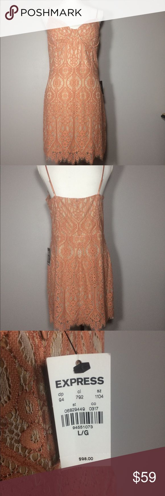Express Peach Lace Dress NWT Brand new with tags, beautiful peach lace dress! Brand: Express  Size: Large Express Dresses Midi