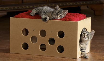 DIY CAT PLAY BOX: cheap & fun! Reuse some old boxes.