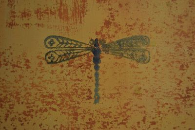 A dragonfly stenciled in the Cypress Room