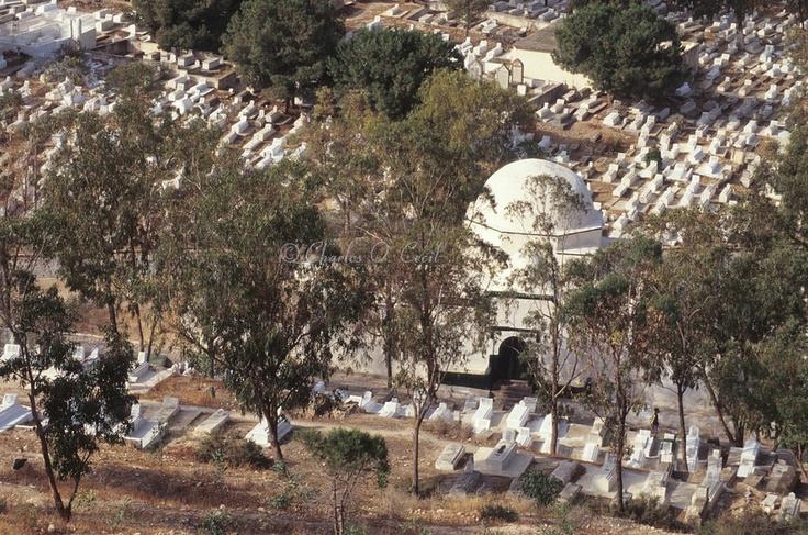 El Jallaz Cemetery