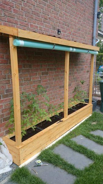 Ein Tomatenhaus ans Haus angelehnt – Bauanleitung …
