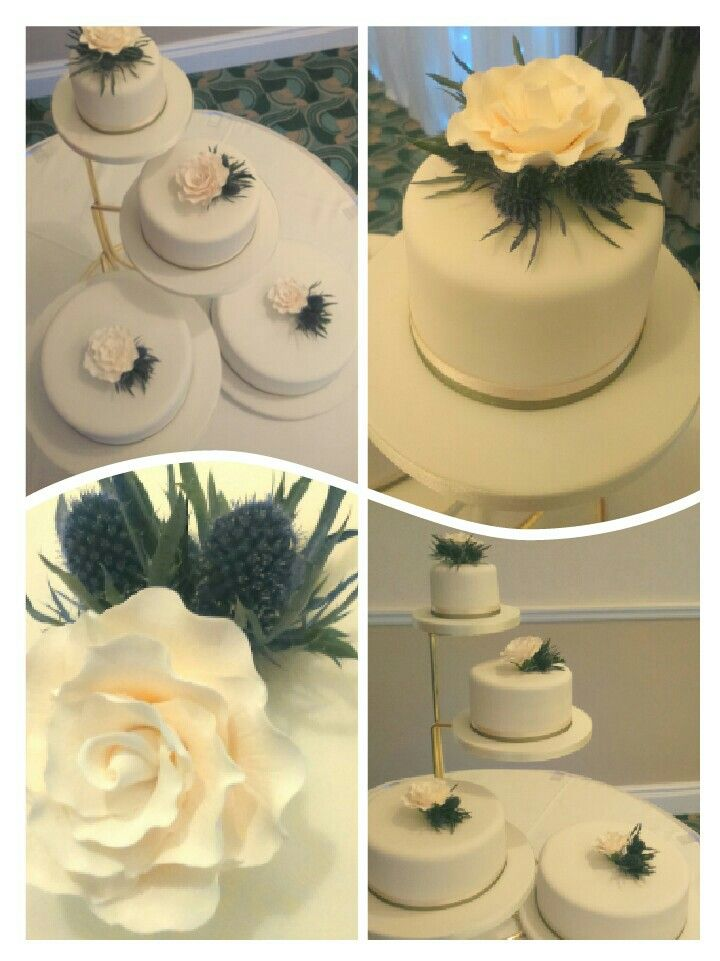 Simply elegant thistle and rose wedding cake