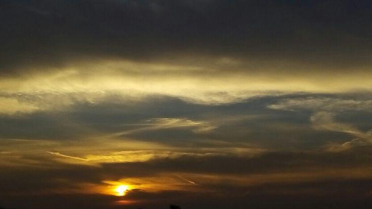 sunrise mtdc