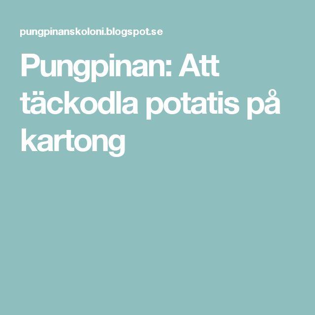 Pungpinan: Att täckodla potatis på kartong