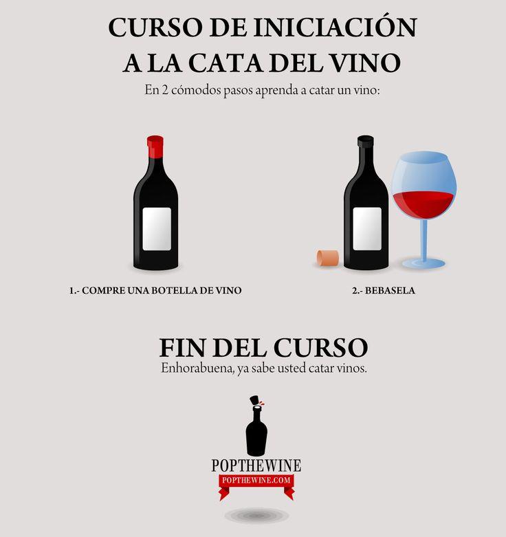 Nuestro curso de iniciación a la cata de vino en dos sencillos pasos... 100% garantizado.  Beso de Vino
