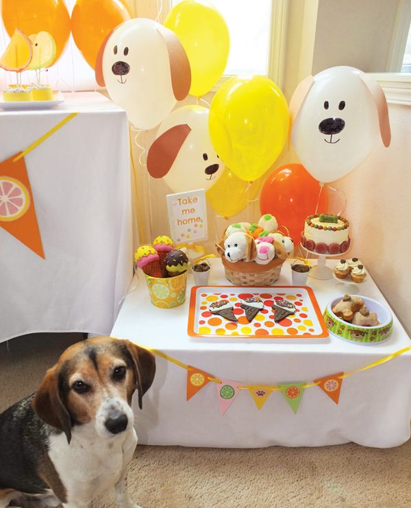 Animal Party Theme Decorations Part - 19: Best 25+ Puppy Birthday Parties Ideas On Pinterest | Puppy Patrol, Paw  Patrol Birthday And Dog Birthday Parties