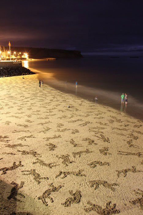 Volunteers Etch 9000 Figures onto Normandy Beach in D Day Memorial