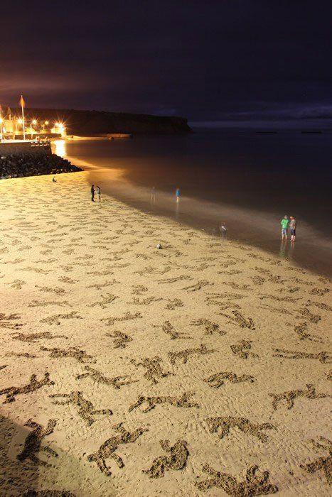 Volunteers Etch 9000 Figures onto Normandy Beach in D Day Memorial