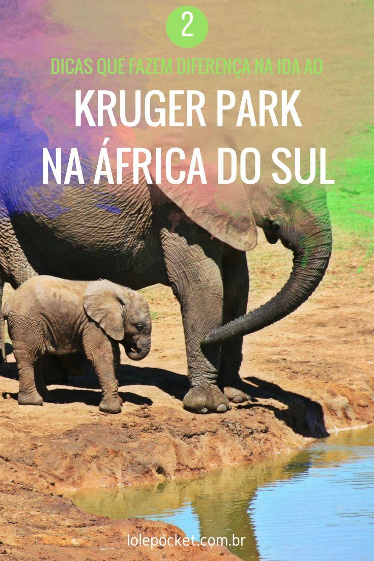 Informações que vão incrementar o seu roteiro e tornar o seu safari no Kruger, na África do Sul, bem mais interessante.
