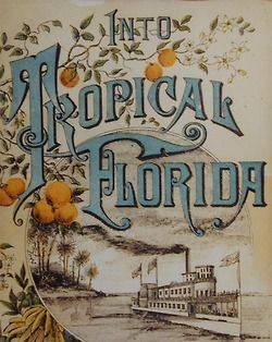 DeBary-Baya Merchants Line travel guide,1884
