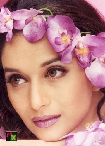 Madhuri Dixit Hot Beauty Still