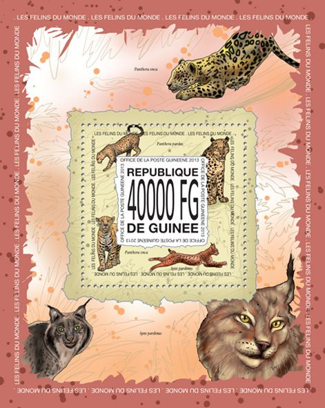 GU 13512 b	Cats of the word, (Panthera onca, Panthera  pardus, Lynx pardinus).
