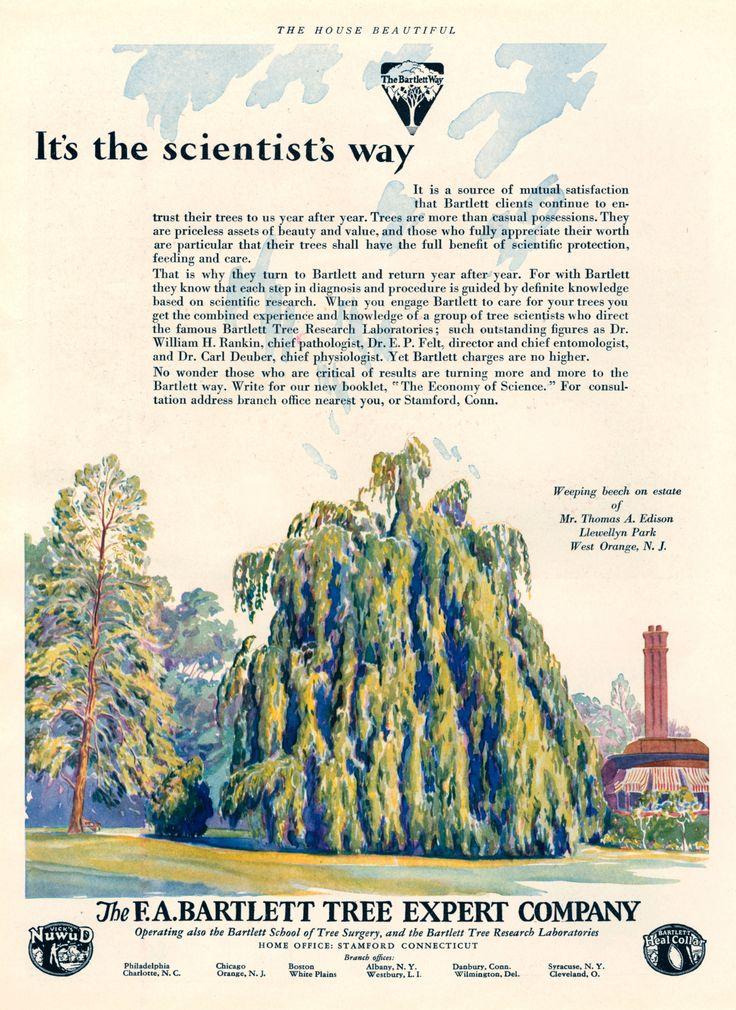 https://flic.kr/p/xwiXCN | Bartlett Tree Experts, 1929
