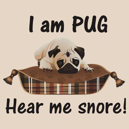 I Am Pug Hear Me Snore Snoring Cure For Sleep Apnea Snoring
