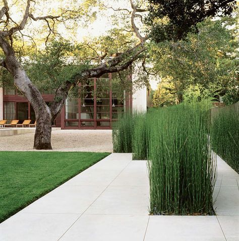 Love the cut outs filled with equisetum (horsetail grass).