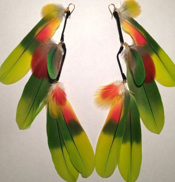 25 best ideas about parrot feather on pinterest parrot