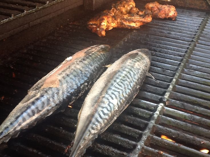 Mackerel stuffed with ginger and green onion.