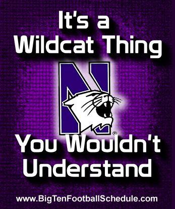 Go Wildcats!!!! http://www.bigtenfootballschedule.com/northwestern_football_schedule.html