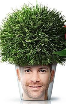 bloempot met gras