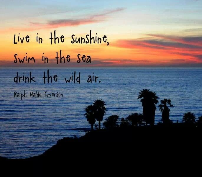 Quotes About The Ocean And Love: 67 Best My Soul Is Tied To The Sea Images On Pinterest