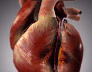 Hat hónappal szívroham előtt ezzel a 6 jellel üzen a halál! Figyelj! – szupertanácsok