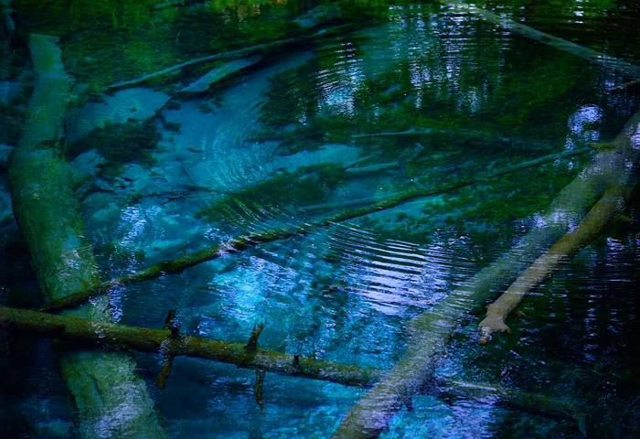 摩周湖の水位は、雪解けの時期になっても高くなりません。それは地層を通して、「神の子池」などに伏流水を湧き出しているから。神の子池は、1日12,000tもの伏流水が湧き出ています。